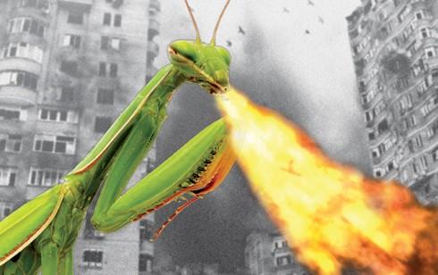 02_Bug