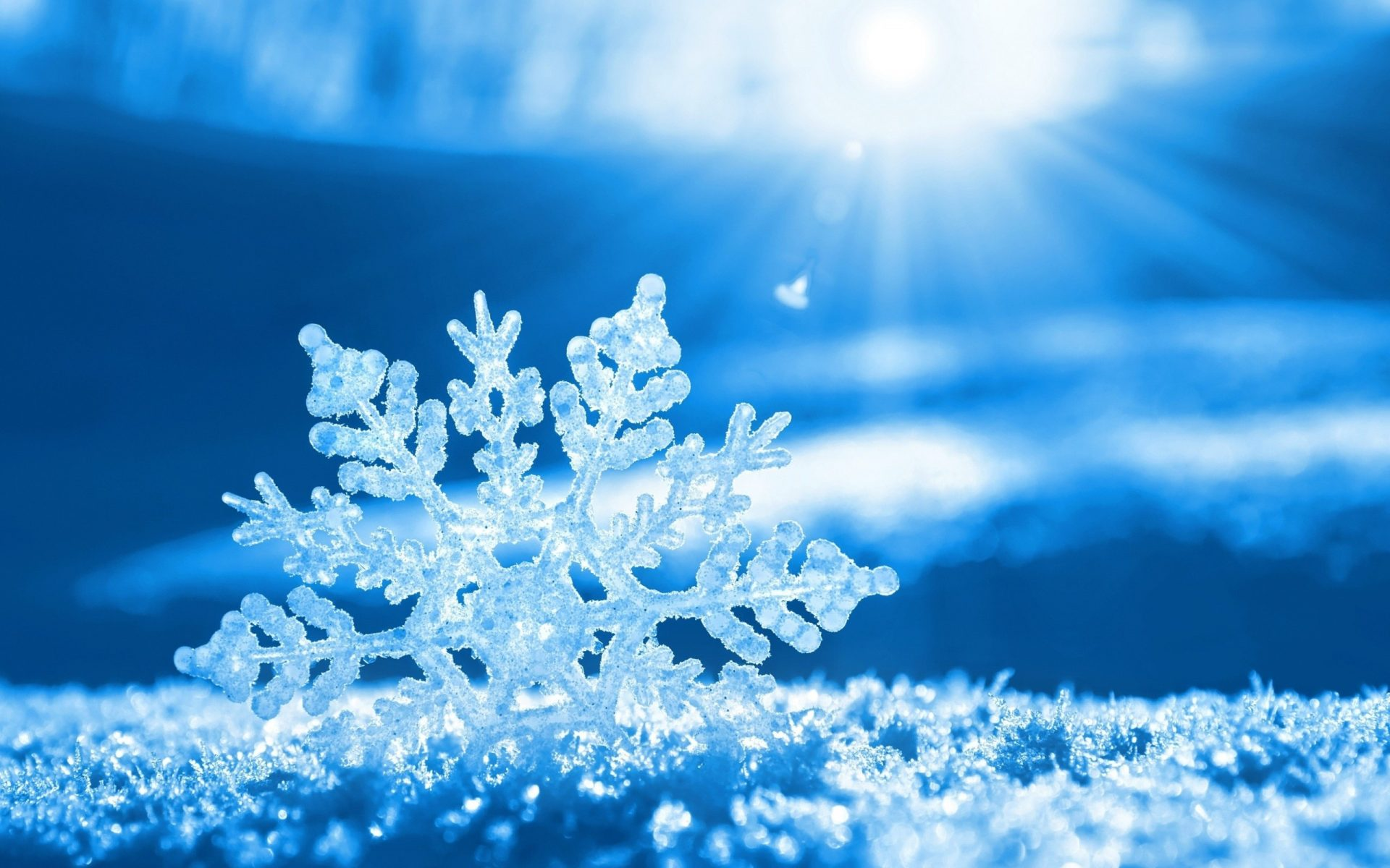 Snowflake offers cloud data warehouse as a service, cheaply - SD Times