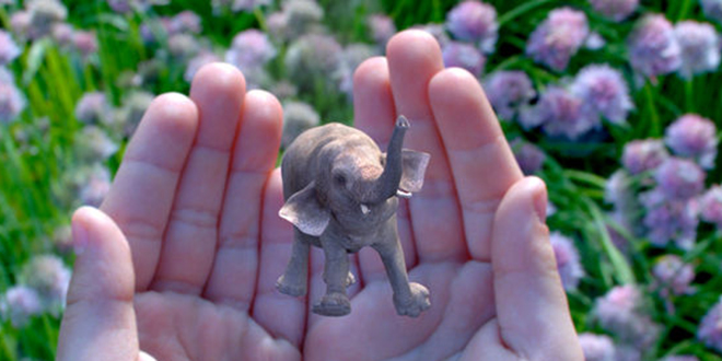 magic-leap-elephant-hands-augmented-reality