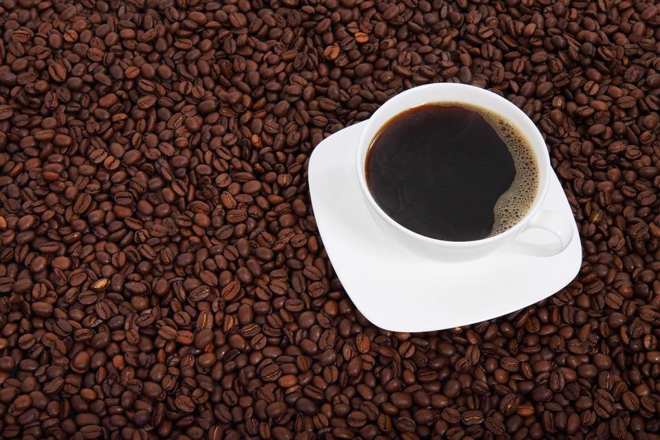 0224.sdt-caffe