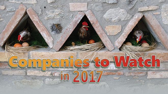 companiestowacth