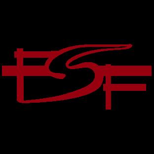 0117-sdt-fsf