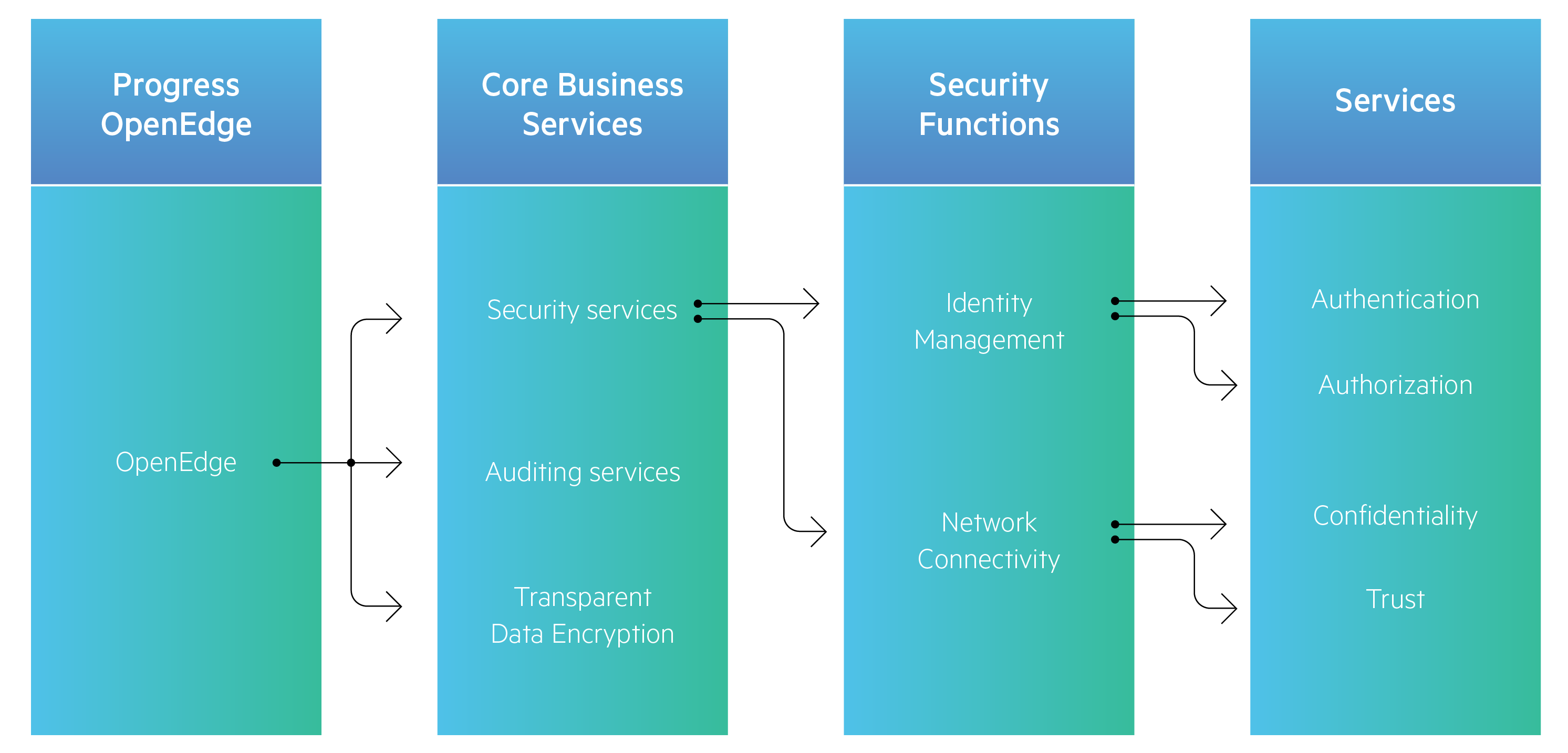 openedge-security-graphic