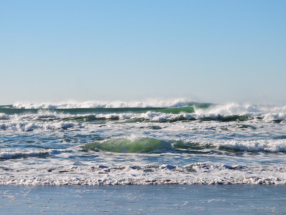 Blue Ocean by Jenkins
