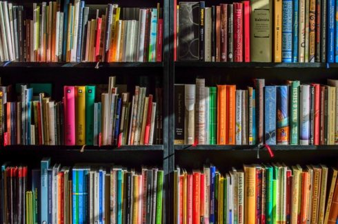 - books bookstore book reading 159711 490x325 - 10 books every web developer should read to increase their software IQ