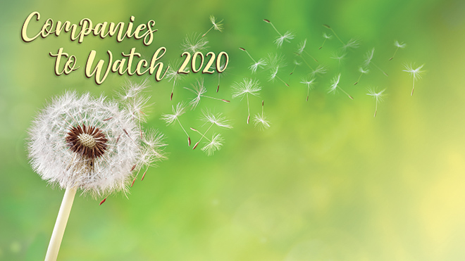 Companies to Watch 2020
