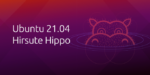 Ubuntu 21.04, also called Hirsute Hippo