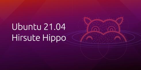 Ubuntu 21.04, also called Hirsute Hippo